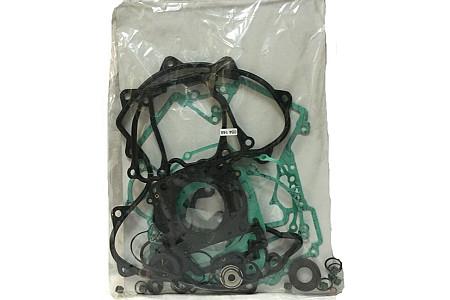 Комплект прокладок двигателя BRP 420684148
