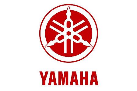Диск колесный задний Yamaha Grizzly 125 3FA-25390-00-35