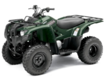 Grizzly 300